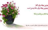 بهار بهترین بهانه برای آغاز و آغاز بهترین بهانه برای شاد زیستن